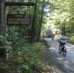 Mountain biking in Gorham NH
